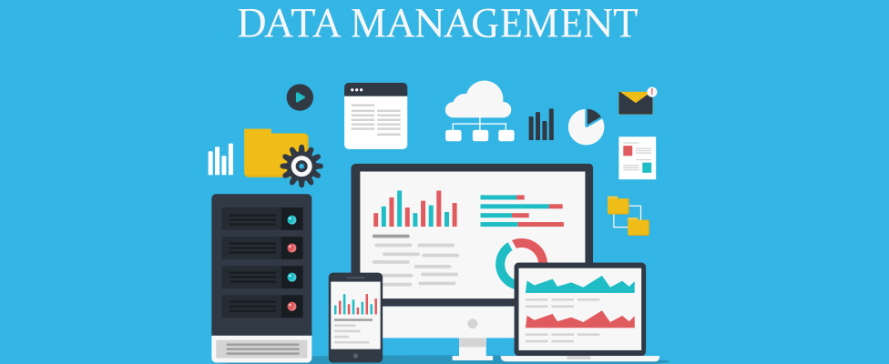 Data Management Company For Your Business