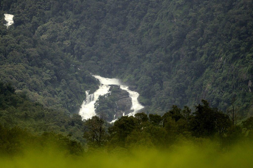 Top 8 Valparai Tourist Places To Visit